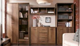Корпусная и встроенная мебель из древесно-стружечных плит